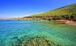 guvercin 300x181 - Many Things About Bodrum