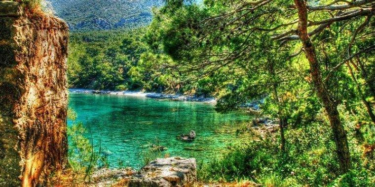 sage tea - Lycian Way